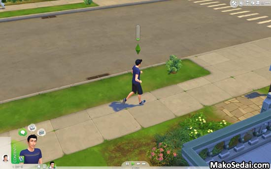LosSims45